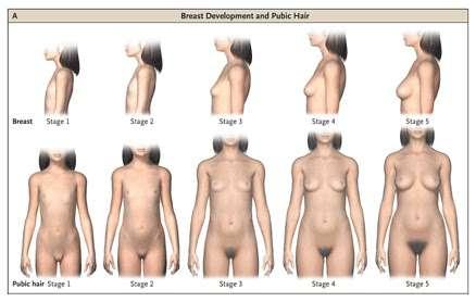 Breast bondage tutorial